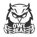 Owlbear Consulting - IT Knowledge